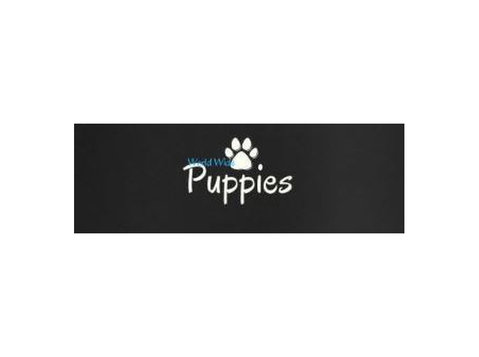 World Wide Puppies - Pet services