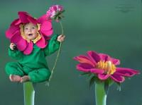 Newborn & Baby Photographer (3) - Photographers