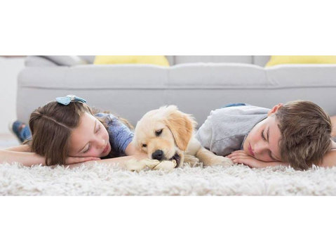 Carpet Cleaning Niceville - Cleaners & Cleaning services