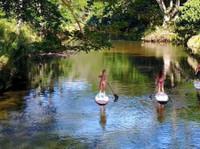 Kauai Sup - Stand Up Paddle Boarding (4) - Sports