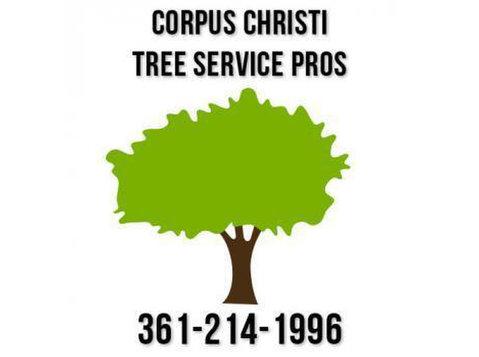 Corpus Christi Tree Service Pros - Gardeners & Landscaping