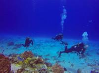 Koox Diving Cozumel (3) - Water Sports, Diving & Scuba