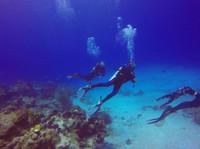 Koox Diving Cozumel (5) - Water Sports, Diving & Scuba