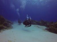 Koox Diving Cozumel (6) - Water Sports, Diving & Scuba