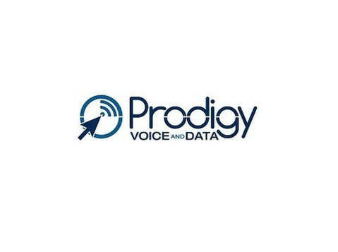 Prodigy Voice and Data, LLC - Consultancy