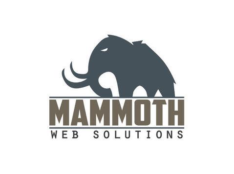 Mammoth Web Solutions - Webdesign