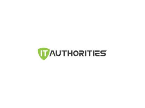 It Authorities - Consultancy