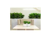 PDI PLants Inc (1) - Gardeners & Landscaping