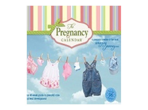 The Pregnancy Calendar - Shopping