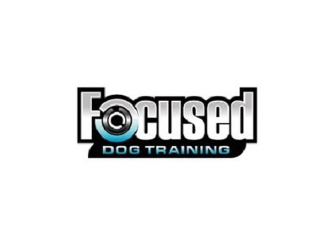 Focused Dog Training, LLC - Pet services