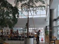 Timber Ridge Tree Service (4) - Gardeners & Landscaping