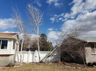Timber Ridge Tree Service (5) - Gardeners & Landscaping