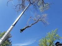 Timber Ridge Tree Service (7) - Gardeners & Landscaping