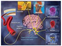Head Pain Institute (2) - Doctors