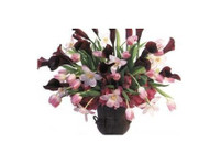 enchanted Florist (2) - Gifts & Flowers