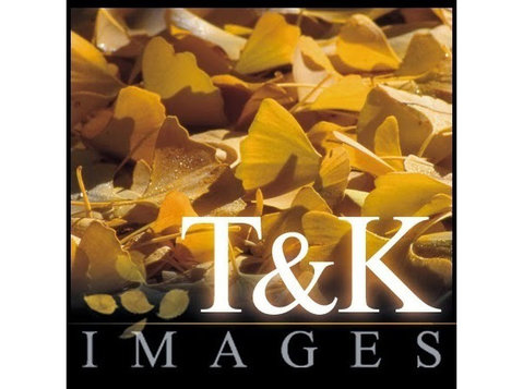 T&k Images - Fine Art Photography Prints - Photographers