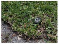 Sprinkler Repair Fresno (8) - Company formation