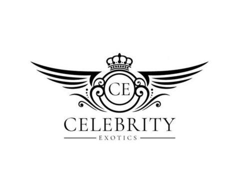 Celebrity Exotic Rentals - Car Rentals