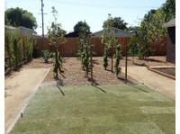 DF Landscape (4) - Gardeners & Landscaping