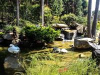 Lake Management Inc. (3) - Home & Garden Services