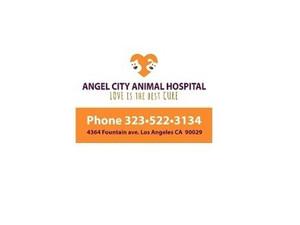 Angel City Animal Hospital - Pet services