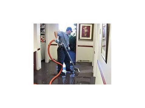 Ramano Water Damage Cleaning - Cleaners & Cleaning services