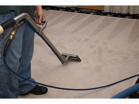 Davani Carpet Cleaning - Cleaners & Cleaning services