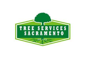 Tree Services Sacramento - Gardeners & Landscaping