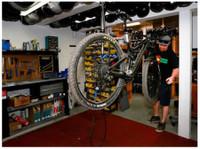 Carvers Ski & Bike Rentals (4) - Water Sports, Diving & Scuba