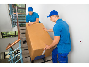 Specialty Moving Services - Mutări & Transport