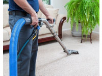 Carpet Cleaning Rogers (2) - Carpenters, Joiners & Carpentry