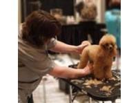 Merryfield School of Pet Grooming (1) - Pet services
