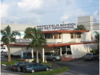 Merryfield School of Pet Grooming (3) - Pet services