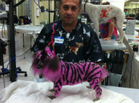 Merryfield School of Pet Grooming (4) - Pet services