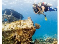 Squalo Divers (5) - Water Sports, Diving & Scuba