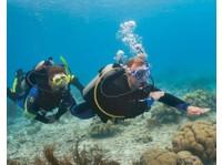 Squalo Divers (6) - Water Sports, Diving & Scuba