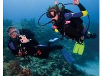 Squalo Divers (7) - Water Sports, Diving & Scuba