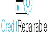Credit Repairable (1) - Financial consultants
