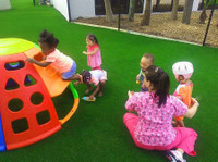 Tk Artificial and Synthetic Grass (3) - Building Project Management