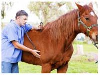 Abba Vet Supply (1) - Pet services