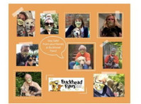 Buckhead Paws Dog Walking and Pet Sitting Services of Atlant (1) - Pet services