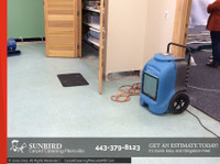 Sunbird Carpet Cleaning Pikesville (6) - Cleaners & Cleaning services