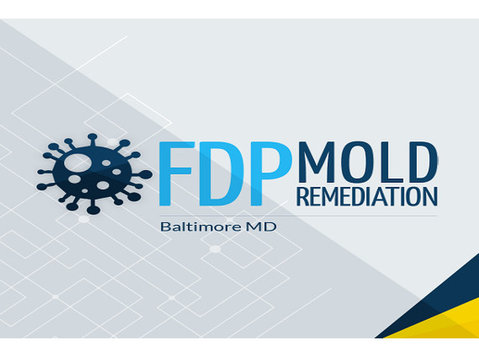 fdp mold remediation - Construction Services