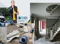 fdp mold remediation (1) - Construction Services