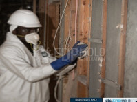 fdp mold remediation (3) - Construction Services