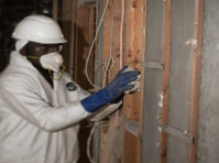 fdp mold remediation (5) - Construction Services