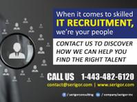 Serigor Inc (1) - Recruitment agencies