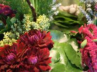 Jephry Floral Studio (3) - Gifts & Flowers