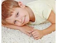Ann Arbor Carpet and Floors (1) - Carpenters, Joiners & Carpentry