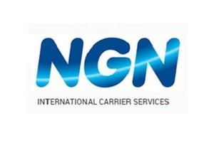 NGNICS - Computer shops, sales & repairs